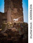 a bird rests among the ruins of ... | Shutterstock . vector #630006206