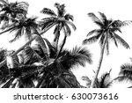 Palm Tree Silhouette  A...