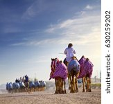 Small photo of camel rides with Camels in Dubai desert sand dunes, United Arab Emirates, concept for wildlife, holiday, environment advertorial ads, brochure and leaflet