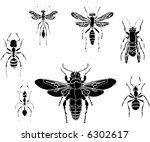 illustration with different... | Shutterstock .eps vector #6302617