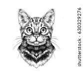 Stock vector cat breed bengal spotted striped head symmetrical sketch vector graphics black and white drawing 630329276