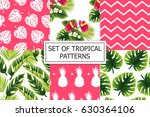 set of tropical ornaments.  | Shutterstock .eps vector #630364106