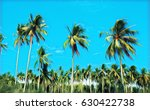 bright tropical landscape with... | Shutterstock . vector #630422738