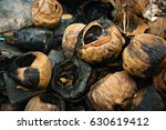 Burning Coconut Shell Close Up