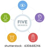 five senses with simple line... | Shutterstock .eps vector #630668246