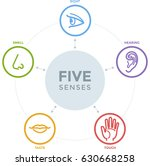 five senses with complex line... | Shutterstock .eps vector #630668258