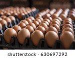 egg  chicken egg | Shutterstock . vector #630697292