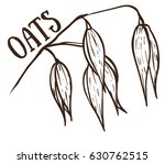 drawing of oat sketch on the... | Shutterstock .eps vector #630762515