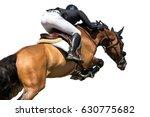 equestrian sports  horse... | Shutterstock . vector #630775682