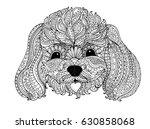 toy poodle  zentangle design ... | Shutterstock .eps vector #630858068