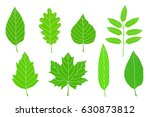 set of hand drawn green leaves... | Shutterstock . vector #630873812