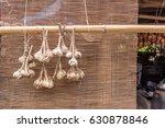 hanging organic garlic bunches | Shutterstock . vector #630878846