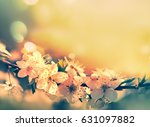 spring card with blooming with... | Shutterstock . vector #631097882