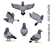 Bird Pigeon Poses Cartoon...