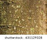 wooden background   texture... | Shutterstock . vector #631129328