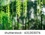 branch | Shutterstock . vector #631303076