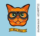 Cute Pilot Cat Face Traveler...