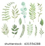 hand drawn watercolor... | Shutterstock . vector #631556288