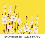 vector spring  apricot... | Shutterstock .eps vector #631559792