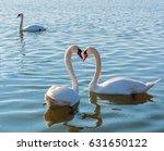 white swans swim in the velence ... | Shutterstock . vector #631650122