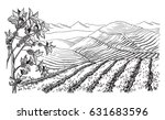coffee plantation landscape in... | Shutterstock .eps vector #631683596