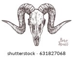 sketch of ram skull. boho and... | Shutterstock .eps vector #631827068