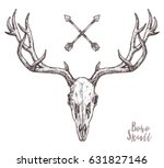 Sketch Of Deer Skull With...