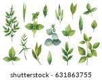 hand drawn watercolor set green ...   Shutterstock . vector #631863755