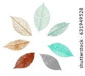 A Set Of Vector Skeleton Leaves ...