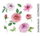 painted watercolor set of... | Shutterstock . vector #631966202