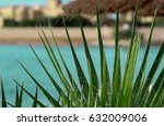 palm tree leaf and blue sea... | Shutterstock . vector #632009006