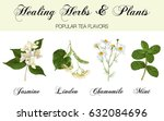 vector realistic detailed... | Shutterstock .eps vector #632084696