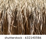 Small photo of Natural thatche roof (Cogon Grass, Alang-alang, Lalang, Imperata Cylindrica roof)