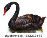 Black Swan Realistic Drawing
