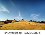 golden meadow with hills and... | Shutterstock . vector #632306876