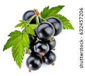 black currant branch isolated... | Shutterstock . vector #632457206