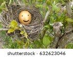 bird nest with a golden egg  ...   Shutterstock . vector #632623046