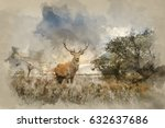 watercolour painting of...   Shutterstock . vector #632637686