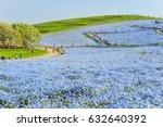 landscape of million nemophilas ... | Shutterstock . vector #632640392