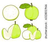 guava fruit set | Shutterstock .eps vector #632801966