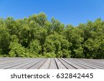 Wooden Terrace And Green Tree...