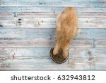 red cat seen from above eating... | Shutterstock . vector #632943812