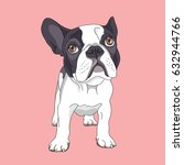 cartoon french bulldog on a... | Shutterstock .eps vector #632944766