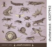 vector set  small creatures  ... | Shutterstock .eps vector #63297943