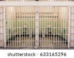 san francisco  california ... | Shutterstock . vector #633165296