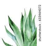 agave leaves. watercolor...   Shutterstock . vector #633464072