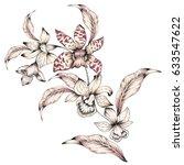 Watercolor Flower Illustration