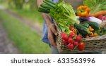 Basket With Vegetables  Cabbag...