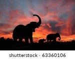 Elephants Enjoy A Spectacular...