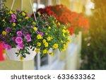 Baskets Of Hanging Petunia...